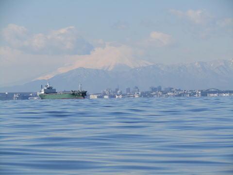 冬の東京湾散骨