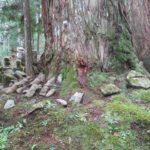 自然石の墓は風景に溶け込む